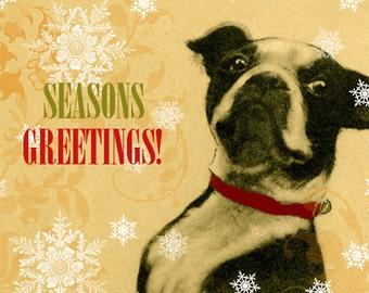 Boston Terrier Christmas Card, Seasons Greetings, Dog Christmas cards, animal Christmas card