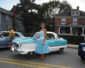 Reserved for Pocahauntis Pin Up Alix of Miami 1950s Vintage Dress Fabulous Print Sundress Circle Skirt 34 B 26 W  VLV