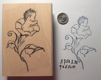 P27 Baby in morning glory rubber stamp, hand drawn pen and ink