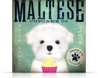 Maltese Cupcake Company dog graphic illustration on gallery wrapped canvas by Stephen Fowler