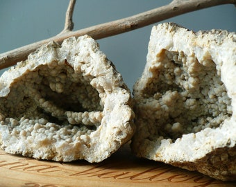 EARTHLY FIND...two sides make one- chalcedony- geode - fossil - display pieces