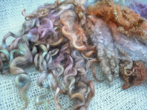 Just Curls nO. 3 BFL and Teeswater kettle dyed wool locks for spinning, felting, carding