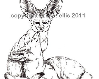 Custom Animal Illustration