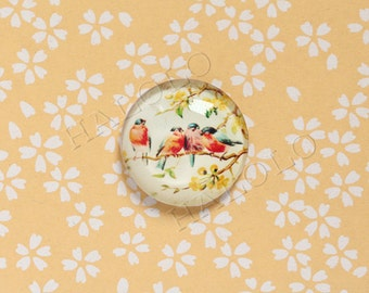 4pcs handmade  birds round clear glass dome cabochons 25mm (250606)