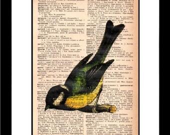 bird print - bird art print - vintage dictionary print - vintage dictionary page print - vintage book page print - 8x10