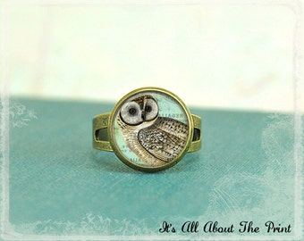 Glass Photo Ring -Vintage Blue Owl- Wearable Art-  Bronze Adjustable Ring