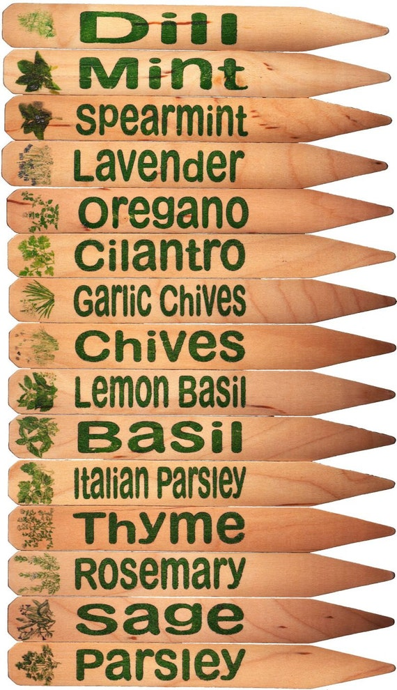 Herb Garden Plant Pot Markers   15 Green W/Pics