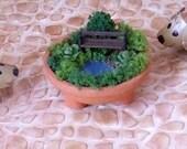 "Dollhouse Miniature ""Living"" Garden - 1/12th Scale"