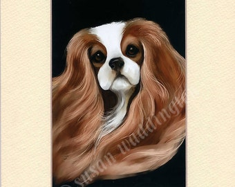 matted 5x7 Cavalier King Charles Spaniel print