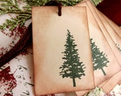 Natural Pine Tree Gift Tags // Christmas Tree // Nature Lover Tags // Set of 6