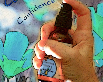 Confidence, Doing New Things, Organic Flower Essence Aromatherapy Spray, Reiki-Infused, Stress Reduction