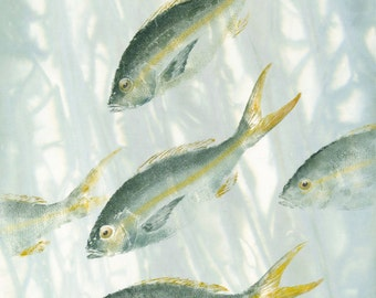 Seekers- Limited Edition Reproduction of gyotaku--yellowtail snappers