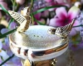 Silver Bird Salt Pepper Shakers Birdbath Garden Godinger Silver Art