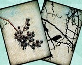 Digital Collage Sheet WINTER BRANCHES 2.5x3.5in Printable Download - no. 0037