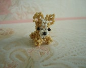Paco the tiny beaded Chihuahua