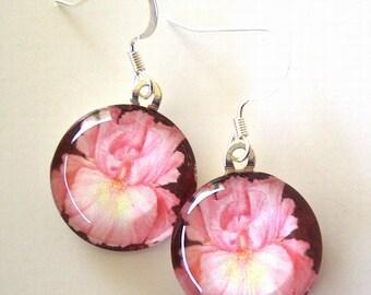 Pastel PInk Iris Drop Earrings Brown Background Jewelry Art Glass