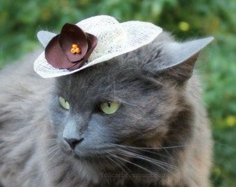 Cat Hat - Spring Hat for Cat - French Roast - Sinamay Pet Hat - Cat Bonnet