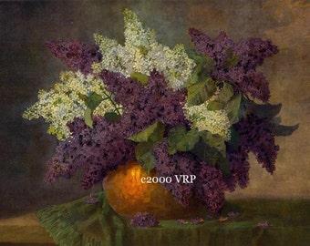 French Lilacs, Art Print, Max Streckenbach, Flower, Lilac, Half Yard Long, Shabby Chic, Lilacs, Lilac