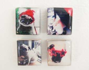 instagram photo cubicle decor - custom photo scrabble® magnets - thumbtacks - personalized photo magnets or tacks - set of four magnet