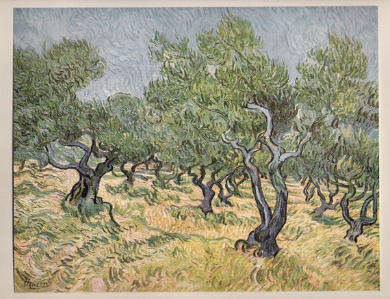 Olive Orchard, Art Print by Van Gogh