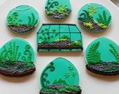 Terrarium Cookie Gift Box - One Dozen (Vanilla) - MADE TO ORDER
