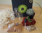 SALE Budget-Priced California Quail Colorful Succulent Terrarium Garden Hanging DIY Kit with Gift Box Option and FREE Stand