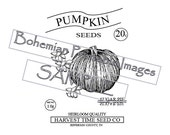 PDF Pattern for Printable Reproduction Pumpkin Seed Pack  Image 4 sizes Harvest Time Seed Co
