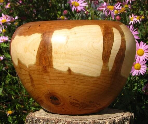 Woodpecker damage cherry bowl