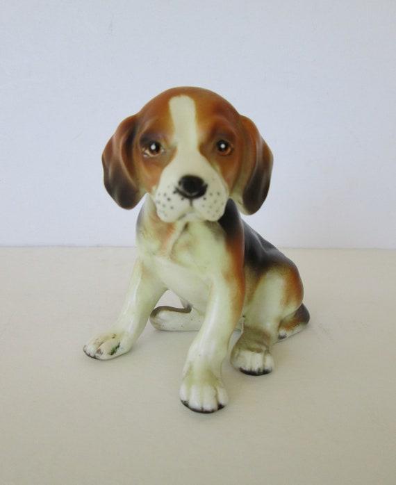 Sweet Little Beagle Pup