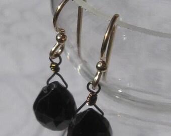 fatdog Earrings - E19 Black Spinel Dangles