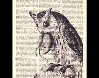 OWL art print wall decor poster Bird of Prey with Rat Mouse natural science ornithology black white vintage dictionary book page 8x10, 5x7