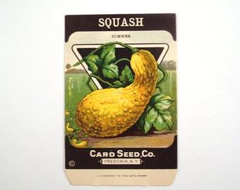 Vintage 1920s Unused Paper Seed Packet Summer Squash