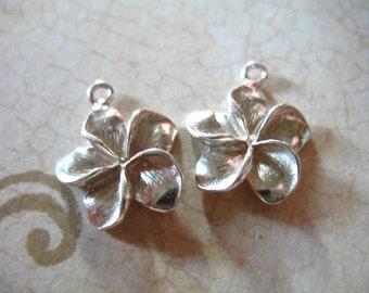 Shop Sale.. 1 pc, PLUMERIA FLOWER Charm Pendant, Sterling Silver Frangipani, 16.5x14 mm, hawaii floral brides bridal weddings organic nature