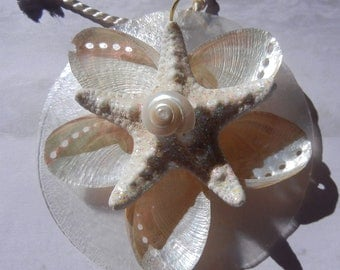 Seashell Holiday Ornament  or Wedding Gift -  Spiral Star - Wedding Favor