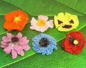 Instant Digital File pdf download knitting pattern - Garden Flower Collection pdf download knitting pattern