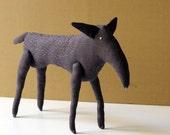 The gray wild wolf