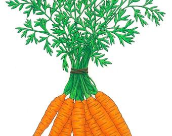 Carrots 8x10