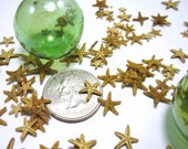 Beach Decor Tiny Starfish for Nautical Decor or Crafts - Florida Bay Starfish, 12pc, 1/4 to 1/2 in