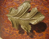 Oak Leaf Drawer Knobs - Cabinet Knobs - Furniture Knobs in Brass (MK104)