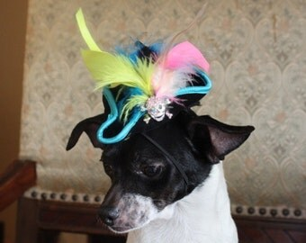Pirate hat for dog or cat with trim and feather