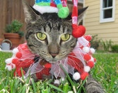 Jolly Jester costume hat and party collar for cats and dogs