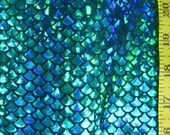 Turquoise on Black Small Fish Scale Lycra Fabric