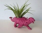 Upcycled Dinosaur Planter - Purple Ankylosaurus with Air Plant