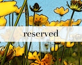 Reserved for Kristina