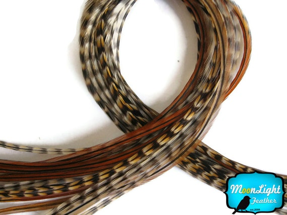 XL Hair Feathers, 6 Pieces - Extra Long UNIQUE CREE Thin Grizzly Rooster Hair Extension Feathers : 821