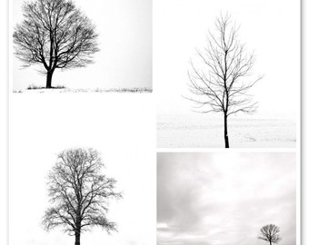 Winter Trees Combo Pack,  Black and White Landscapes,  Minimalist Wall Art, Nature Photography, 8X10 Mats, Snow, Ready to Frame