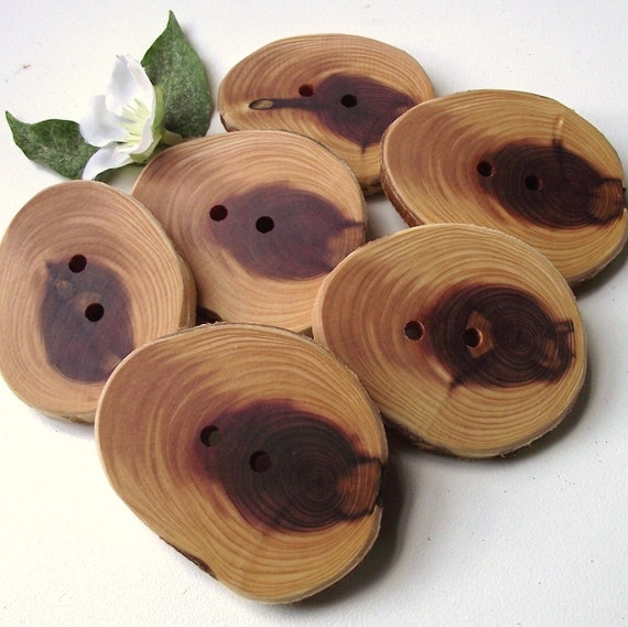 Handmade Wooden Buttons - 6 Cedar Wood Tree Branch Buttons - 2 1/4 x 1 3/4 inches, 2 Holes, For Knitting, Journals, Pillows, Purses