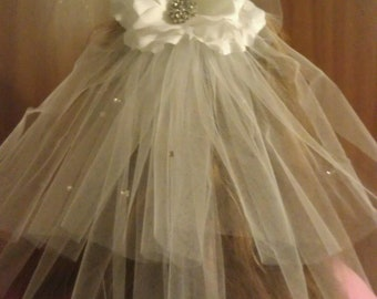 Bachelorette Party Veil with crystals