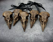 Crow Christmas Tree Ornaments (5) Faux Crow Skull Christmas Tree Ornaments Set of Five - Bird Skull Black Brown Decorations