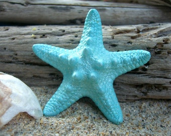 Starfish Hair Clip-PALE AQUA-Starfish Hair Accessories, Mermaids, Beach Weddings, Starfish, Mermaid Party Favor, Mermaid Costume, Weddings